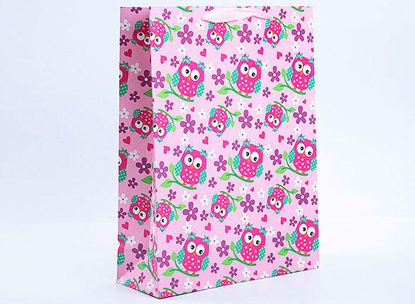 Подарочный пакет «Совушки» средний