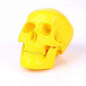 Декоративный череп маленький