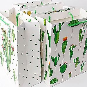Подарочный пакет «World of cactus» большой