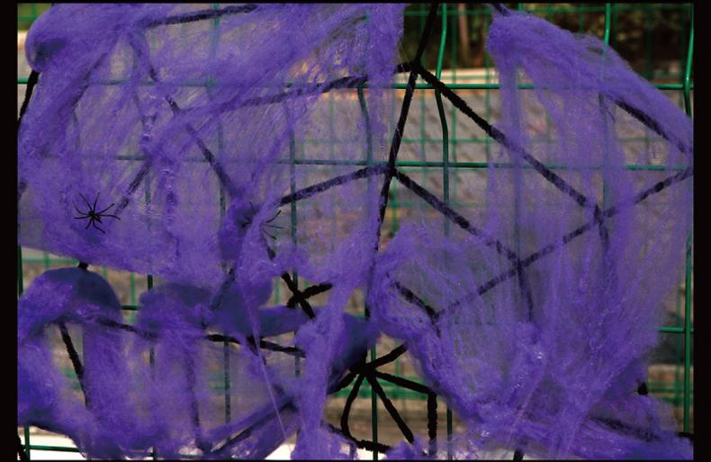 Декоративная паутина с паучками