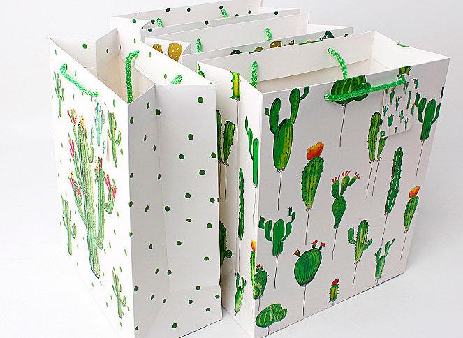 Подарочный пакет «World of cactus» маленький
